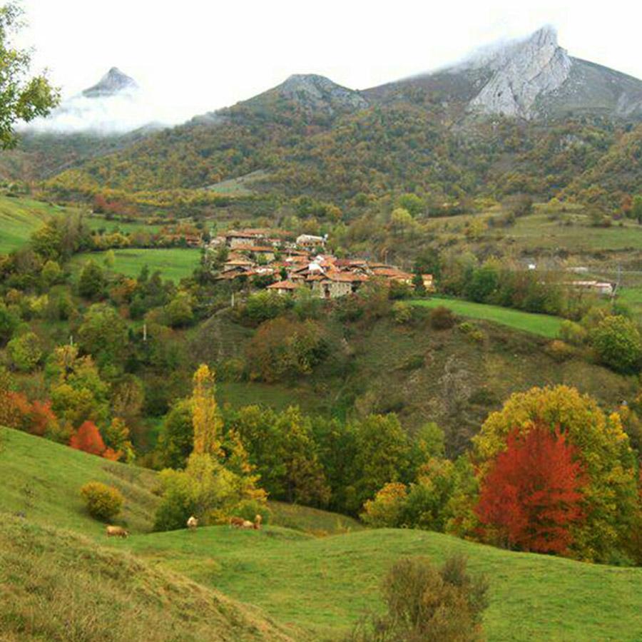 Valles y Cumbres - Mundo Rural